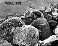 May 1944: a Polish soldier on the Snake�s Head Ridge.